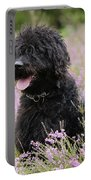 Black Labradoodle Portable Battery Charger