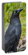 Black Tasmanian Crow Standing In Green Forest Portable Battery Charger