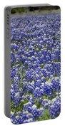 Blue Bonnet Carpet V7 Portable Battery Charger