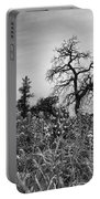 Blue Bonnets-black And White Portable Battery Charger