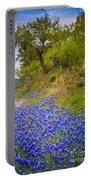 Bluebonnet Meadow Portable Battery Charger