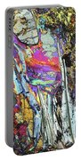 Blueschist Portable Battery Charger