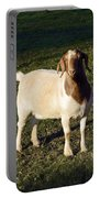 Boer Goat  Portable Battery Charger