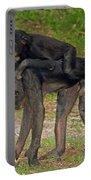 Bonobos Portable Battery Charger
