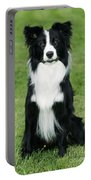 Border Collie Dog Portable Battery Charger