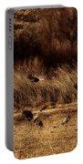 Bosque Del Apache New Mexico-sand Cranes V2 Portable Battery Charger