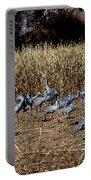 Bosque Del Apache New Mexico-sand Cranes V3 Portable Battery Charger