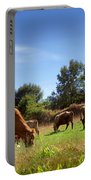 Bovine Cattle  Portable Battery Charger by Carlos Caetano