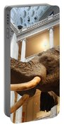 Bull Elephant In Natural History Rotunda Portable Battery Charger