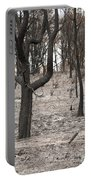 Bush Fire Portable Battery Charger