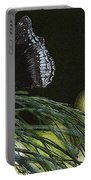 Butterfly Collection Portable Battery Charger