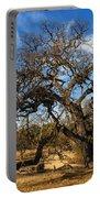 California White Oak Portable Battery Charger