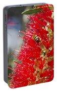 Callistemon Citrinus - Crimson Bottlebrush Portable Battery Charger