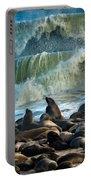 Cape Fur Seals Arctocephalus Pusillus Portable Battery Charger