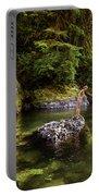 Cascade Locks, Oregon, Usa. A Woman Portable Battery Charger
