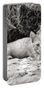 Cat And Lavender  Portable Battery Charger
