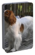 Cavalier Portable Battery Charger