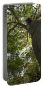 Ceiba Tree Portable Battery Charger