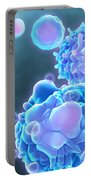 Cell Life Cycle Portable Battery Charger