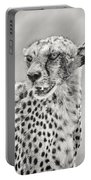 Cheetah Portable Battery Charger by Adam Romanowicz