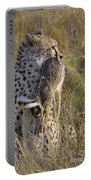 Cheetah Carrying Its Prey Portable Battery Charger