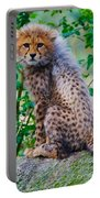 Cheetah Cub On A Rock Portable Battery Charger