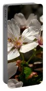 Cherry Blossom - 3 Portable Battery Charger