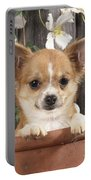Chihuahua Dog In Flowerpot Portable Battery Charger