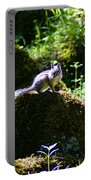 Chipmunk In The Sun Portable Battery Charger