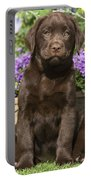Chocolate Labrador Puppy Portable Battery Charger