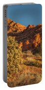 Cholla Cactus And Red Rocks At Sunrise Portable Battery Charger