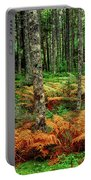 Cinnamon Ferns And Red Spruce Trees Portable Battery Charger