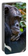 Close-up Of A Chimpanzee Pan Portable Battery Charger