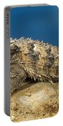 Coast Horned Lizard Portable Battery Charger