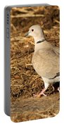 Collared Dove Portable Battery Charger