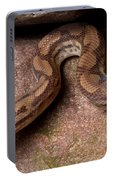 Colombian Rainbow Boa Epicrates Maurus Portable Battery Charger