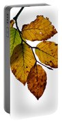 Colorful Leaves Isolated On A White Background Portable Battery Charger