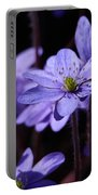 Common Hepatica Portable Battery Charger