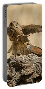 Common Kestrel Falco Tinnunculus Portable Battery Charger