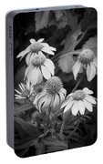 Coneflowers Echinacea Rudbeckia Bw Portable Battery Charger