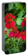 Coneflowers Echinacea Rudbeckia Portable Battery Charger
