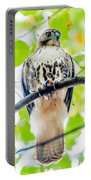Coopers Hawk Perched On Tree Watching For Small Prey Portable Battery Charger