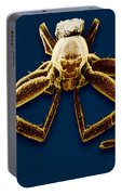 Crab Spider Portable Battery Charger