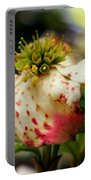 Cranberry Dogwoods Portable Battery Charger by Karen Wiles