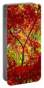 Crimson Window Portable Battery Charger