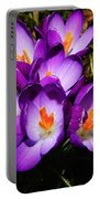 Crocus Flower Portable Battery Charger