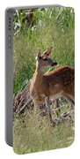 Curious Whitetail Portable Battery Charger