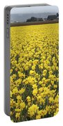 Daffodil Field Portable Battery Charger