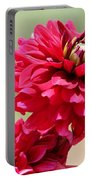 Dahlia Named Caproz Jerry Garcia Portable Battery Charger