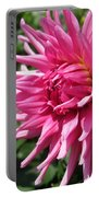Dahlia Named Pretty In Pink Portable Battery Charger